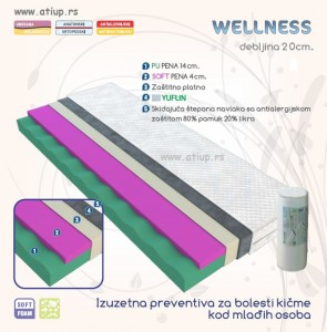 Wellness www